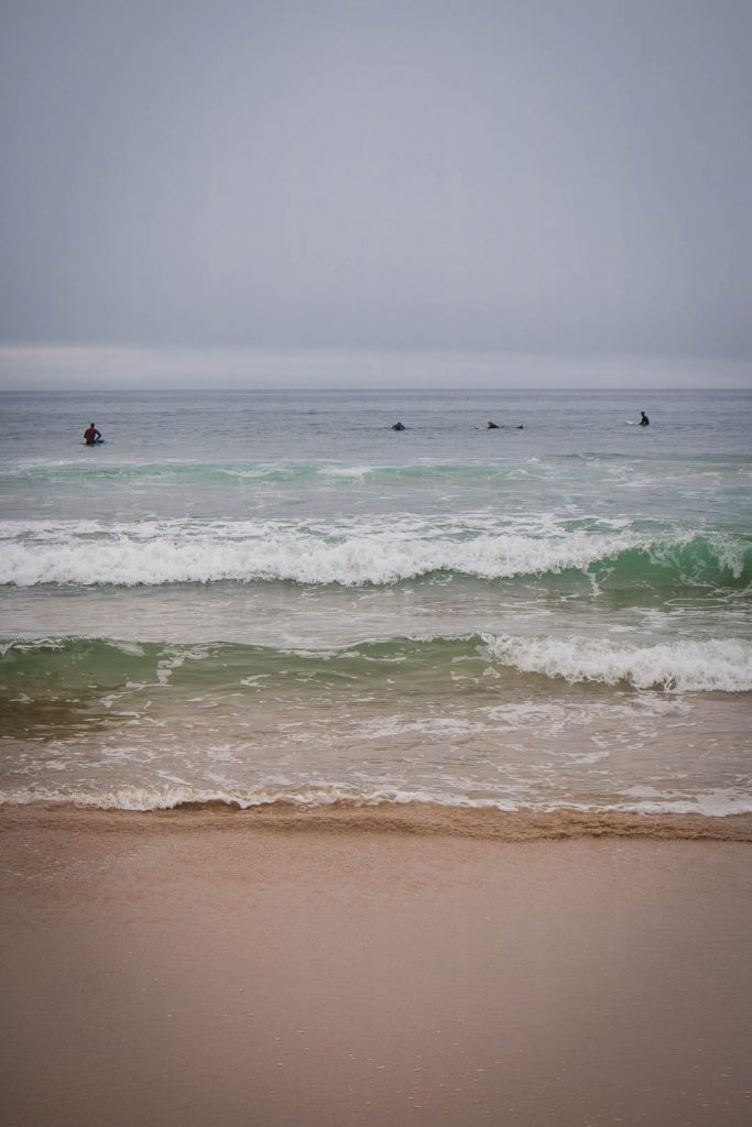 A group of surfers out at sea