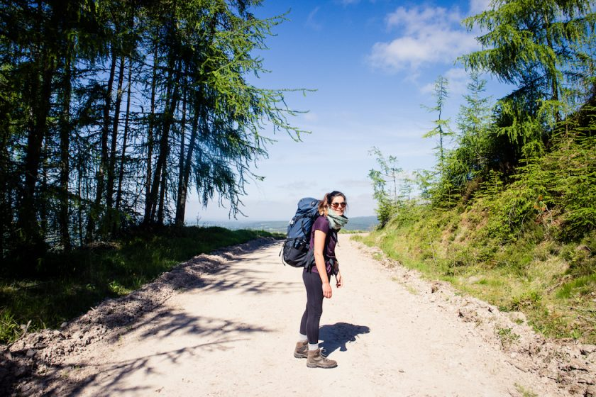 A woman with a backpack hiking on a bright forest track in Scotland - Speyside Way