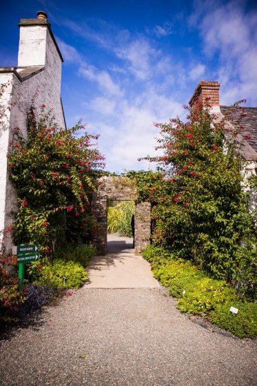 A gateway at Logan Botanic Garden in South Scotland