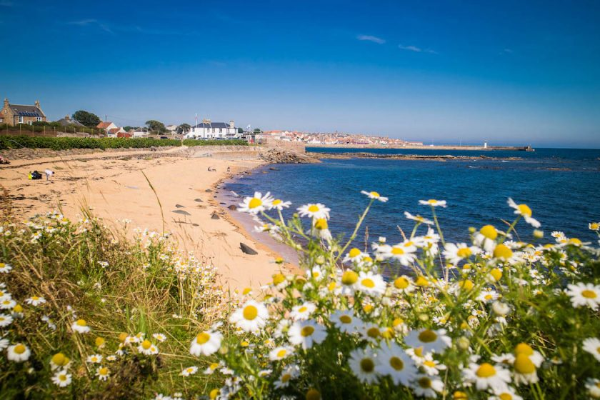 Flowers, a beach and a village on the Fife Coastal Path in Scotland - Photo by Kathi Kamleitner -75