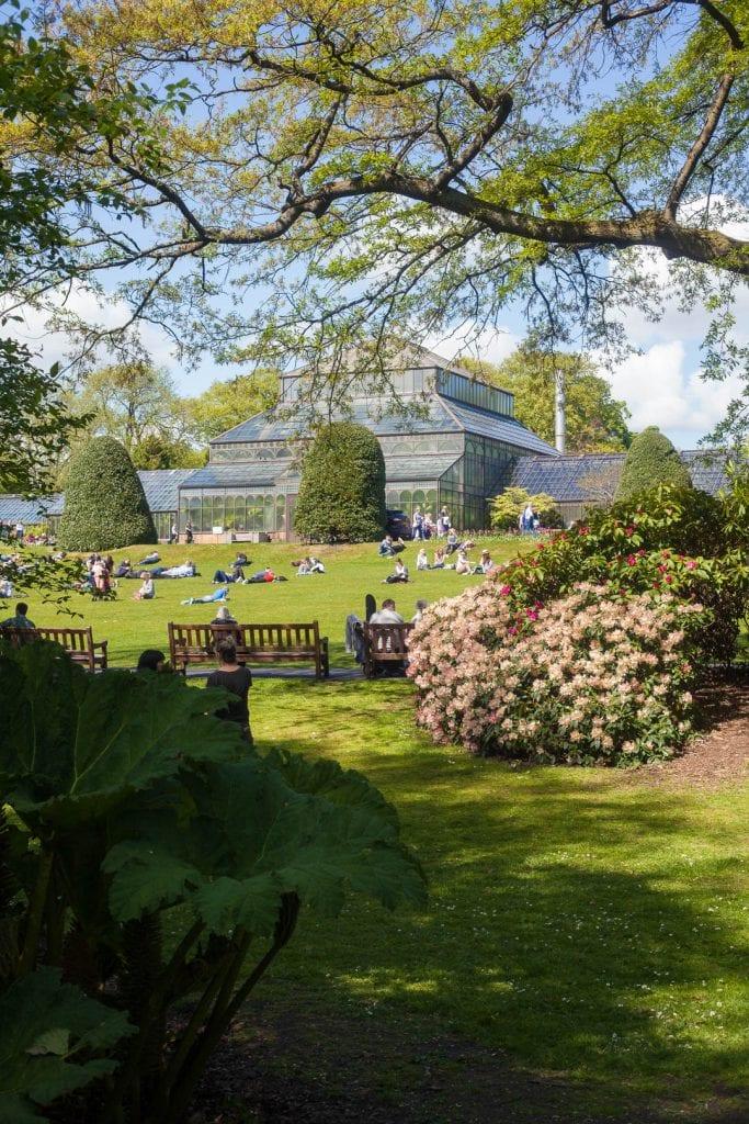 The glasshouse at the Glasgow Botanic Gardens.