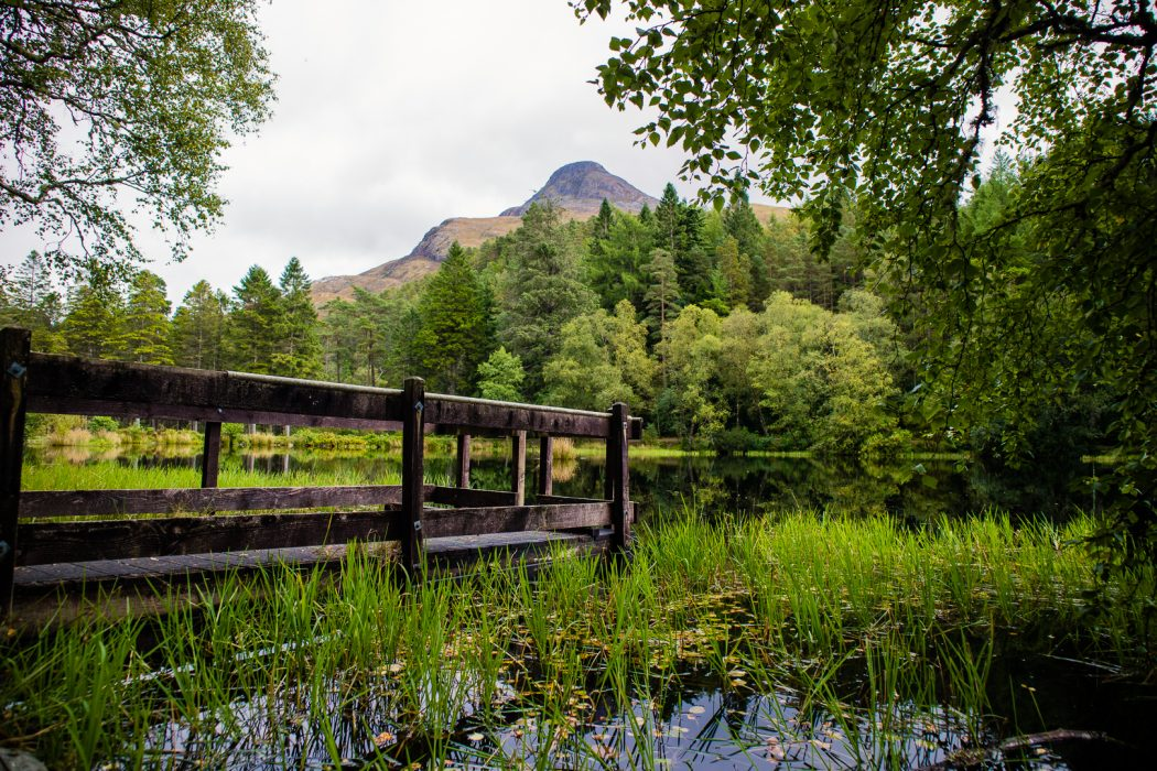 Scenic Road Trips in Scotland: From Glasgow to Fort William