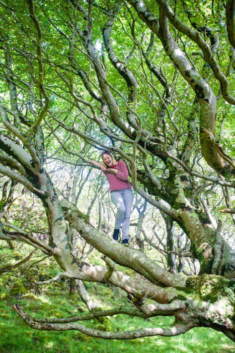 A woman climbing a tree on the Isle of Ulva.