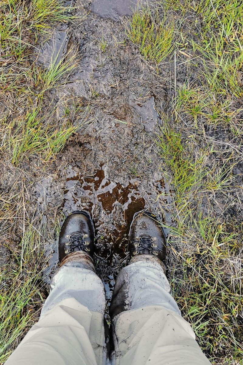 Two feet in hiking boots standing on boggy and muddy ground