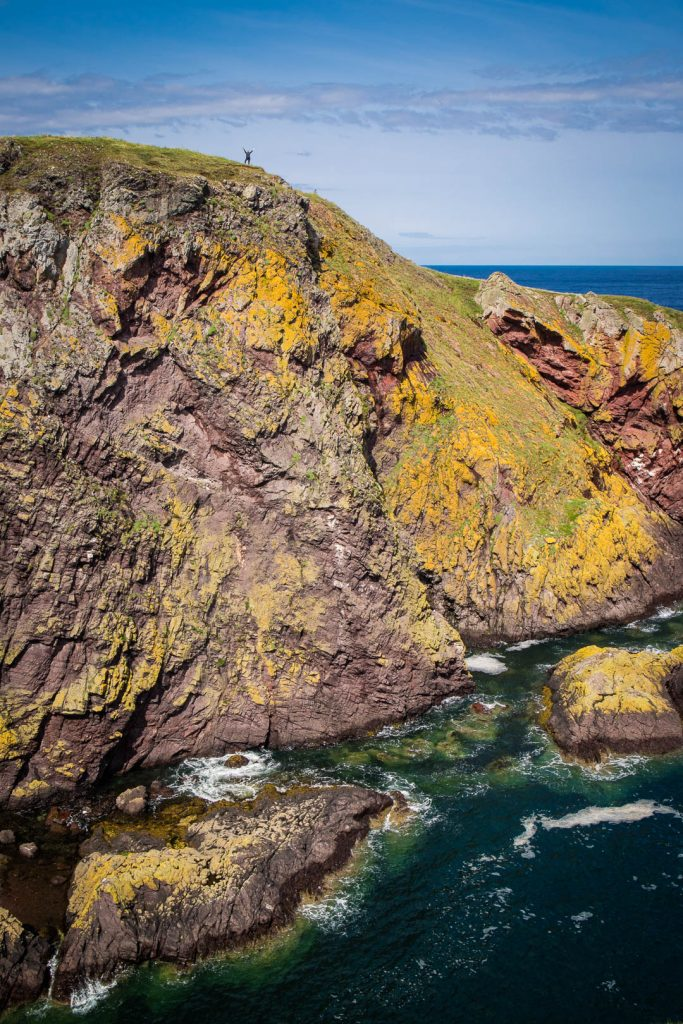 A tiny person standing at the cliffs of St Abbs Head in the Scottish Borders.