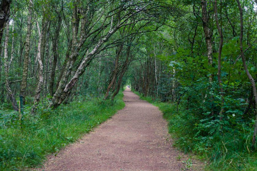 Seven Lochs Wetland Park, Glasgow, Scotland