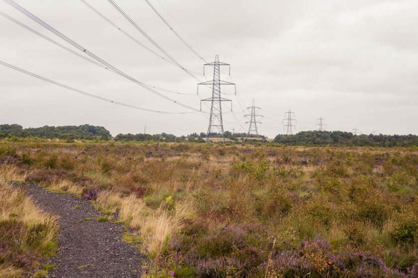 Commhead Moss raised bog at Seven Lochs Wetland Park, Glasgow, Scotland