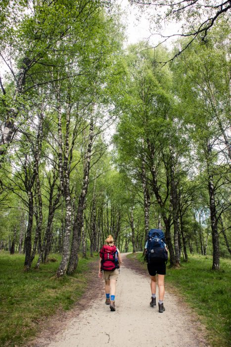 Walking across the sparse moorland near Aviemore.