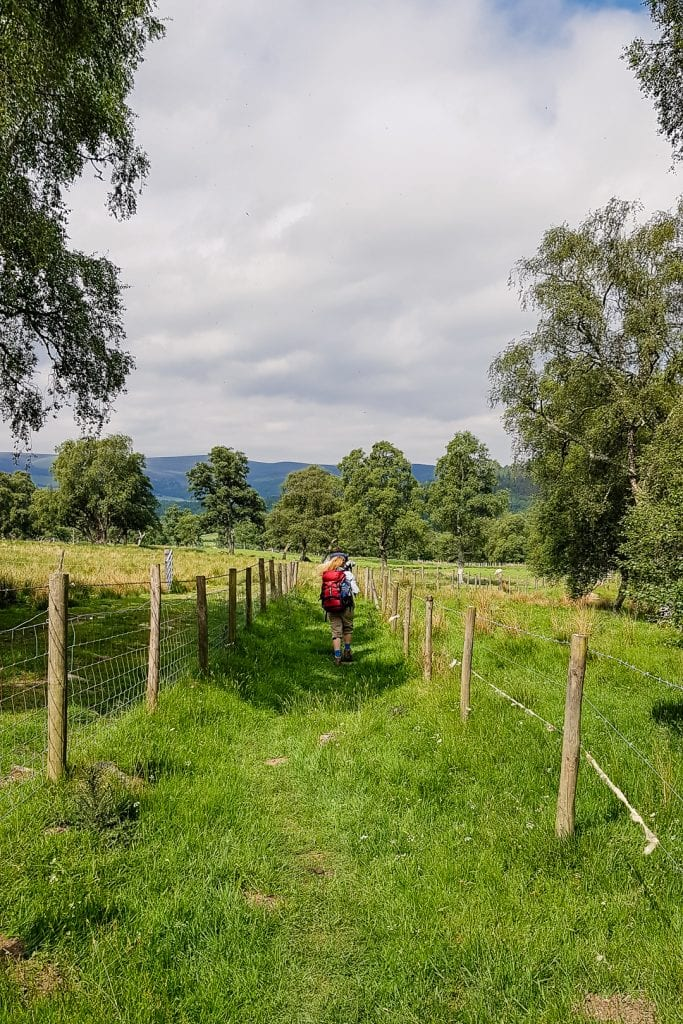 Walking across farmland on the Speyside Way.