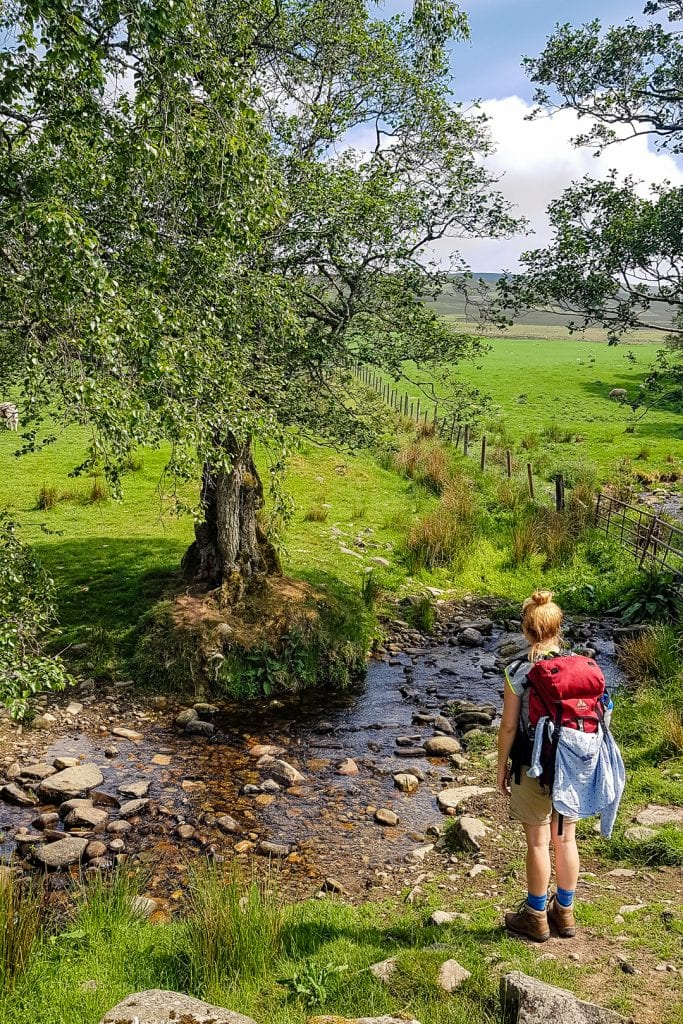 My friend Lin standing by a small creek on the Speyside Way.