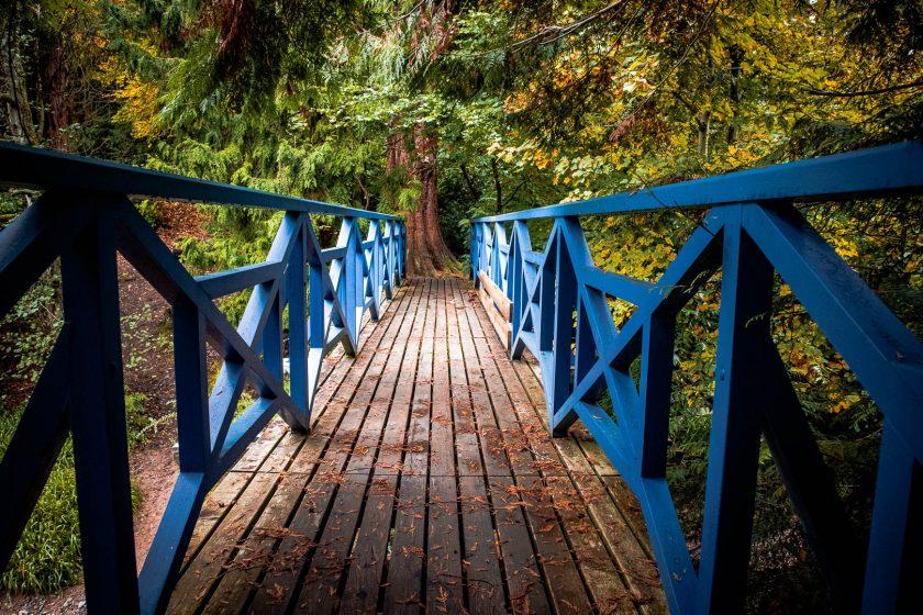 The blue bridge in the Big Wood at Cawdor Castle in Scotland
