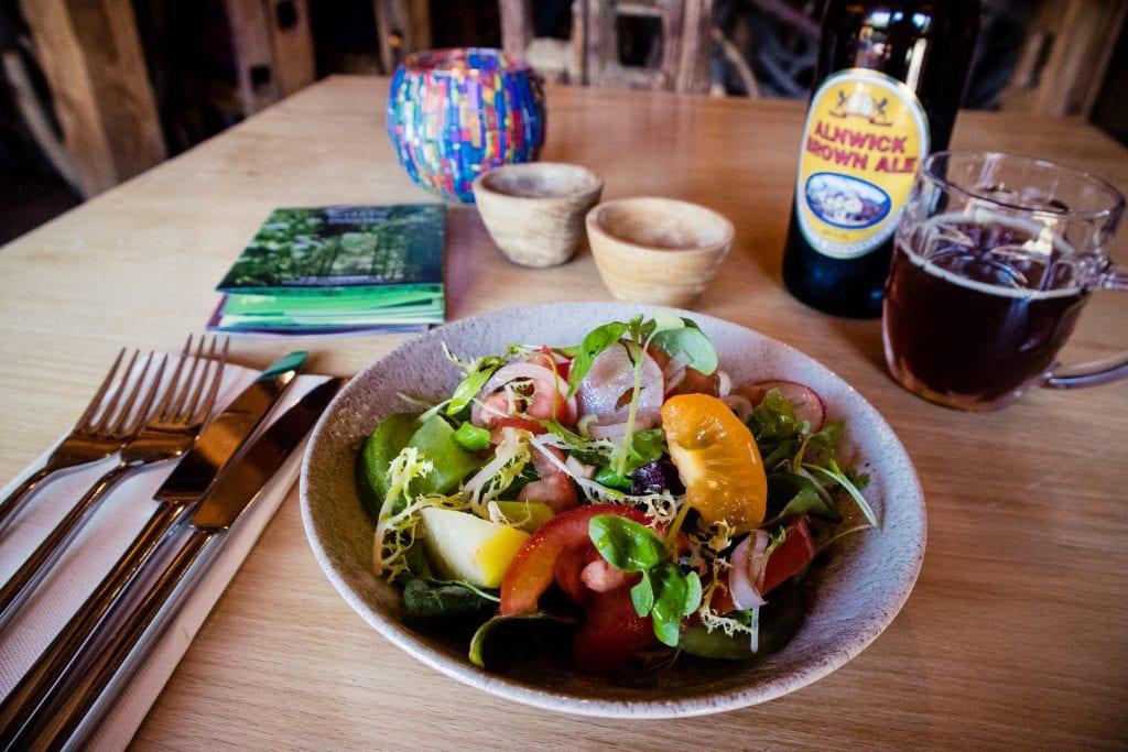 A salad for starter at Treehouse restaurant near Alnwick Garden.