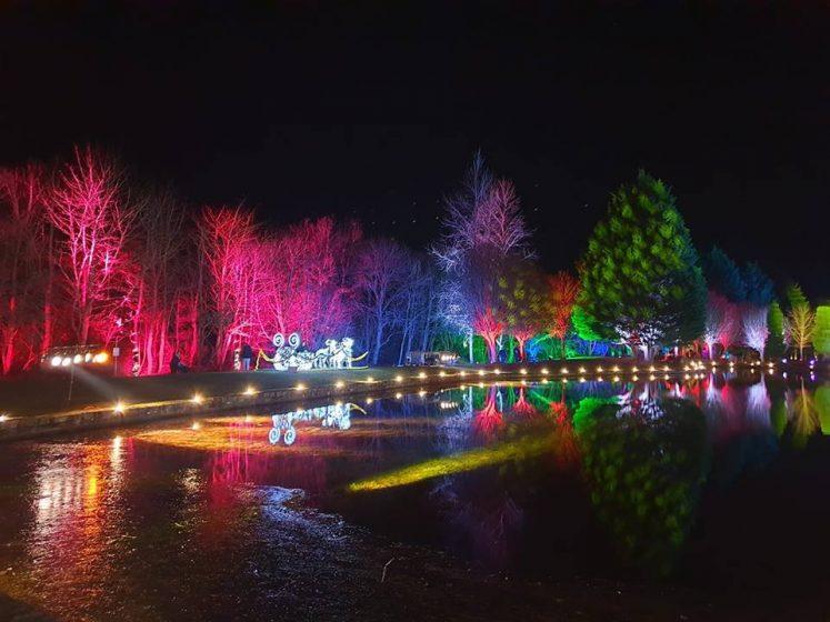 Winter Wonderland at Whin Park