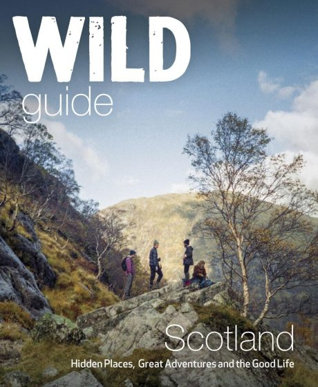 book cover of Wild Scotland by Kimberley Grant
